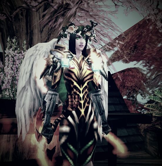 Power and beauty – Mysa's character in Order & Chaos Online